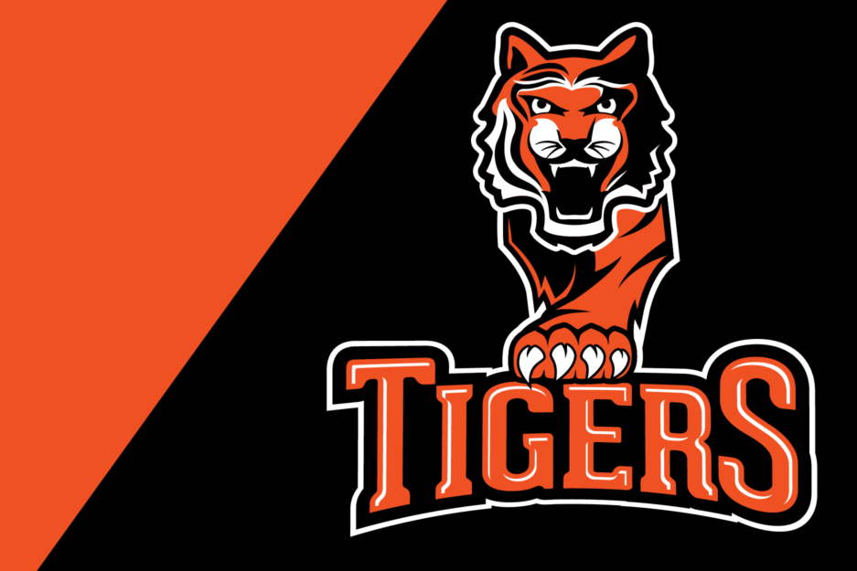 The Tabb zone provided an interesting challenge for me. The students, parents, and community members love their (MANY!) tigers, and orange is everybody's favorite color. As loyal and true as they are, however, there was never one mascot and logo for the town to rally behind and claim as their own. This was my parting gift to York County School Division: a successful delivery of a mascot and logo. After 6 months of designing and educating key stakeholders on what makes a good logo and the importance of brand consistency, together we were able to obtain buy-in from the community and provide a successful logo, which will be officially unveiled during the 2016-17 school year.